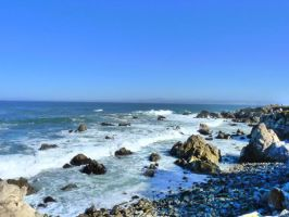 Pacific Grove, CA S4 by nyann