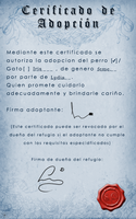 Certificado Iris by Lyd2000