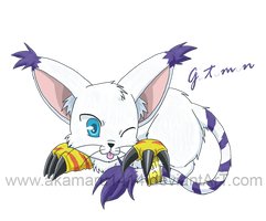 Gatomon by akamaru1414