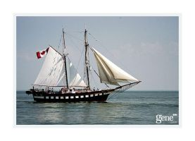 D100 Tall Ship 02 by genesm