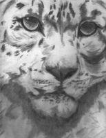 leopard face by cypris-quynh
