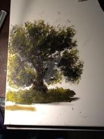 Tree practice by sceh