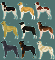 Jaegerhund Imports .:DRAW TO ADOPT:. by freckledtrash