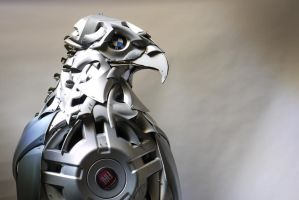 Eagle4 by HubcapCreatures