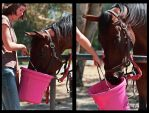 Its Ma Bucket by MoonLitePhotography