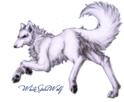 WhiteSpiritWolf_OwnChara 2009 by WhiteSpiritWolf