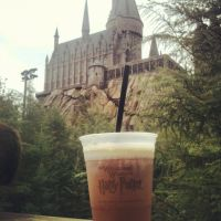 Butterbeer and Hogwarts by Timitu