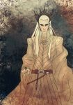 The Elvenking by fantasy-fairy