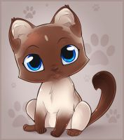Siamese Kitten by Dragoart