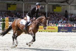 Show Jumping Phase Wesko KWPN Stock 11 by LuDa-Stock