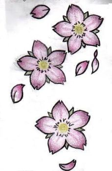 my cherry blossoms - colored by omfgxxitsashley