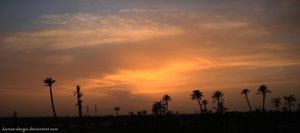 Palm And Sunset Marrakech by hamza-design