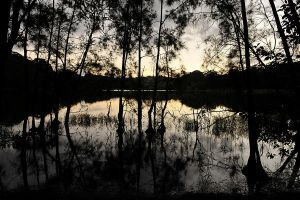 Bulbararing lagoon - dusk 1 by wildplaces