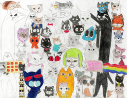 Awesome Meeting Of Awesome Cats by wintercool612