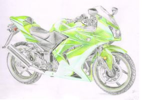 Kawasaki Ninja 250R (better quality) by xClarXCheex