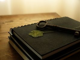 Sketchbooks and a Four-Leaf Clover by barananduen