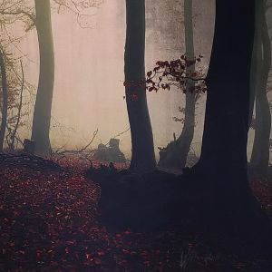 My Fall by Weissglut