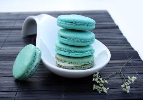 French Macarons by laurenjacob