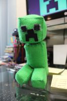 My Crappy Creeper by DanikaMilles