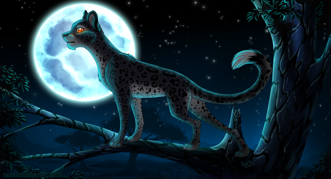 Nightwatcher by RukiFox