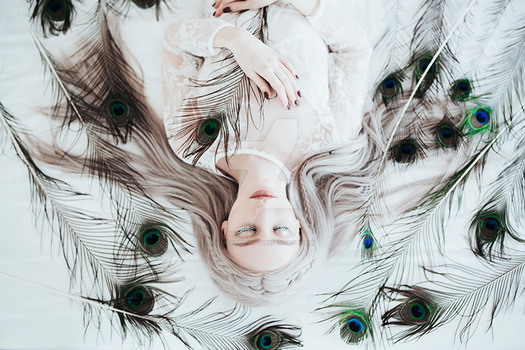 White peacock by thefirebomb