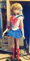 11.5 Sailor Moon Doll 2000 by Pink-chi