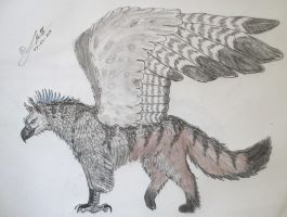 Southern Griffin by Mortsyn