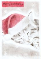 Merry Christmas   -Maow- by juliette-nichole