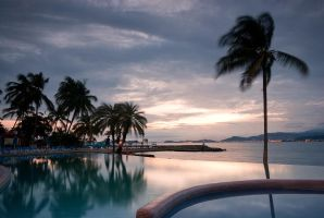 The Pool and The Palms by Jase036