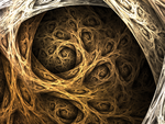 Roots by FractalEuphoria