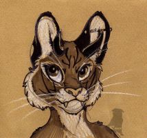 Tora by therealbloodhound