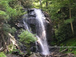 Anna Ruby Falls 2 by LunarBerry