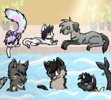 Pool Party by Spashai