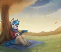 a calm evening by High-Yote
