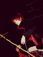 Sasori no danna ... by Sweet-pain91