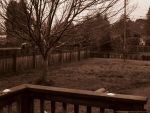 To Ill To Leave The Porch in sepia tones by KittenDiotima