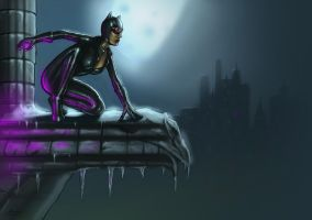 Catwoman   Digital Painting by maxim6394