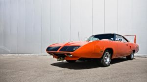 Superbird by AmericanMuscle
