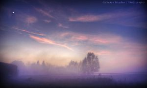 Purple Foggy Sky HDR by HDRenesys