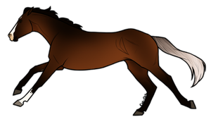 Horse Adoptable: Thoroughbred by Cat-Orb-Shop