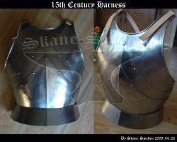 15th Century Harness by Skane-Smeden
