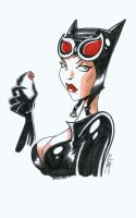 Catwoman Sketch by KidAntipathy
