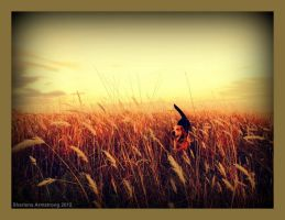 field of dreams by onyxfreak