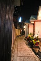 Path in Gion by YuffieV