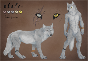 Blade Reference Sheet by Sidonie