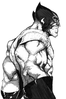 Wolverine After TinCan21 by AshleyJSmith