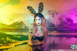 Julie Black Bunny 2 by recipeforhaight