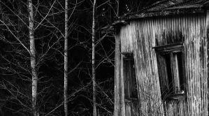 14.11.2015: Naked Aspens and Abandoned One by Suensyan