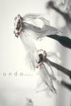 Something rotten by undoMeds
