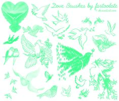 Dove Brushes by fartoolate